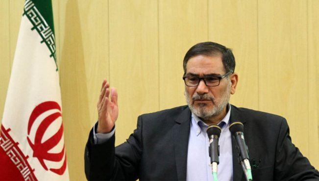 Шамхани:«Террористы в Сирии и Ираке являются инструментами США для проведения их политики