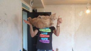 Защитилась котом