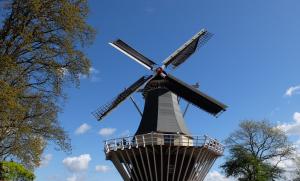 В Ялуторовске возведут уникальный парк мельниц