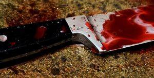 В Ивановской области молодой человек 20-ти лет убил своих бабушку и дедушку