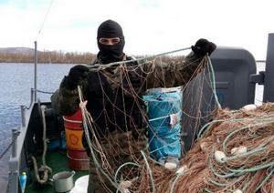 В Смоленской области поймали двух москвичей-браконьеров