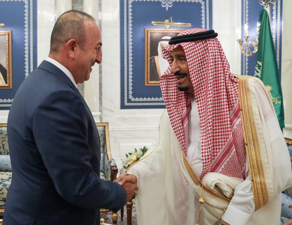 Катарский кризис и посредническая миссия Турции