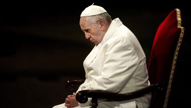 Папа Римский: «Все животные попадут в рай»