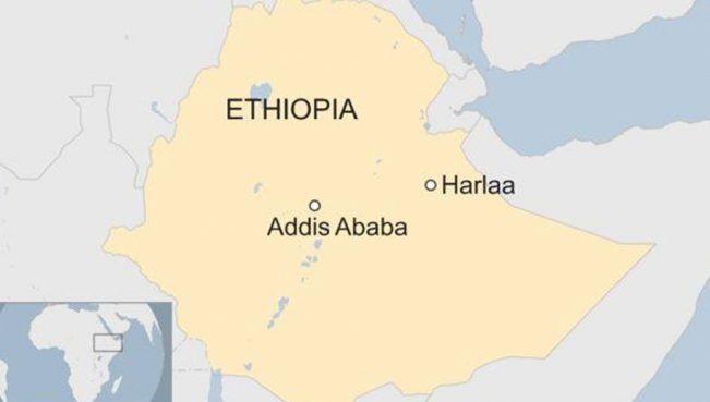 Эфиопский историк: «Нахождение античной Харлы ещё раз доказывает фальшивость армянской истории»