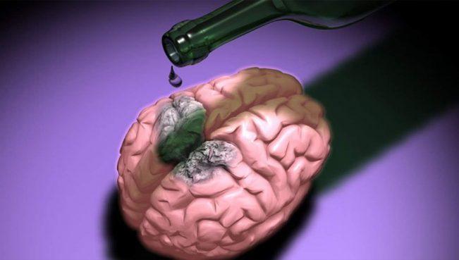 Что делает алкоголь с мозгом? — культовый доклад академика