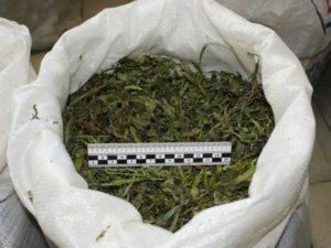 Жителя Чистополя будут судить за хранение килограмма конопли