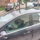В Иваново иномарку проткнули ломом как бабочку