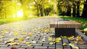 В парке Иваново рецидивист изнасиловал ребенка