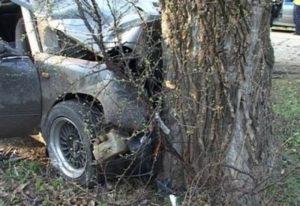 Трое людей доставлены в больницу в результате наезда «ВАЗа» на дерево в Нижегородской области