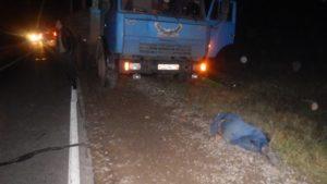 В Агрызском районе «КамАЗ» на трассе насмерть сбил пожилого велосипедиста