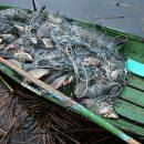 В Рязанской области на реке Оке задержали браконьера-рецидивиста
