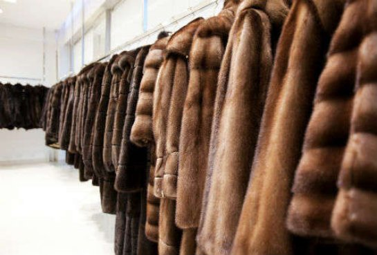 Самые модные меховые изделия по выгодным ценам вы сможете купить на нашем сайте